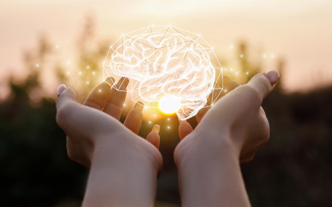 Voeding voor je brein: brainfood